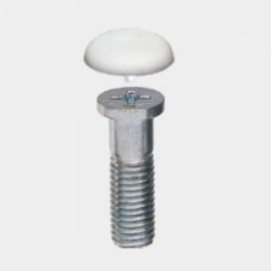 M10 Philips Head Screw & Cap