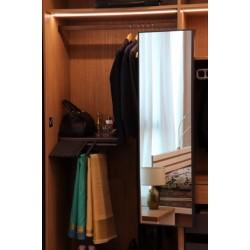 Wardrobe Mirror Pullout