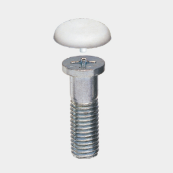 M10 Philips Head Screw & Cap